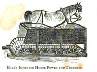 horse-walking-in-threshing-machine