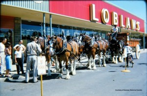Loblaws grocery 1958 plaza 72 dpi