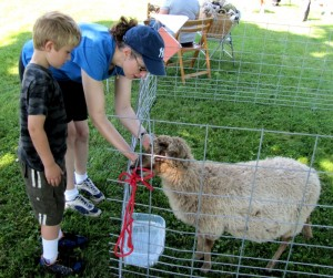 boy-and-woman-pet-sheep-in-pen