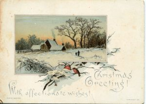 an outdoor winter scene with two birds in a nest and a house in the background